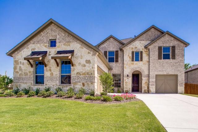 7100 Barolo Drive, Rowlett, TX 75088 (MLS #13761319) :: Team Hodnett