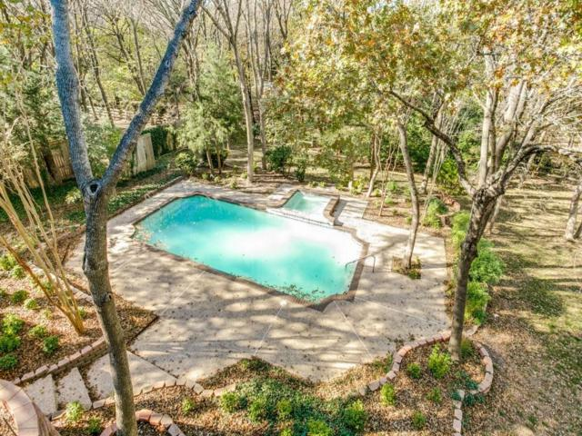 811 Timberwood Lane, Fairview, TX 75069 (MLS #13762224) :: The Mitchell Group