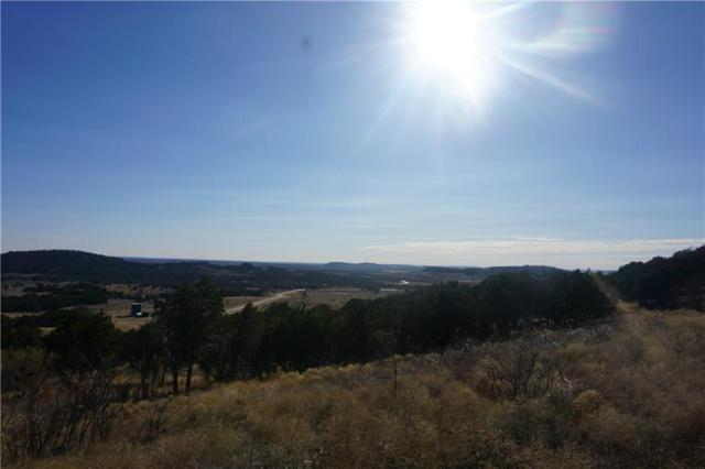 1037 Blazing Star Court, Possum Kingdom Lake, TX 76449 (MLS #13762935) :: Team Hodnett