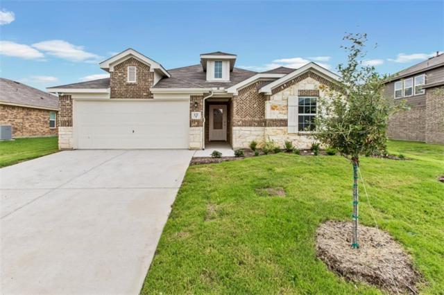 132 Chestnut Road, Waxahachie, TX 75165 (MLS #13765100) :: North Texas Team   RE/MAX Advantage