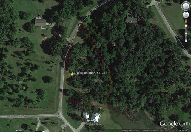 TBD SE Cr 3124A, Mildred, TX 75109 (MLS #13766761) :: Team Hodnett