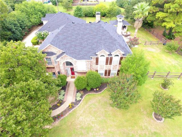 441 Cross Timbers Drive, Double Oak, TX 75077 (MLS #13768497) :: Team Hodnett