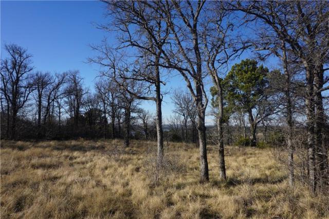 1080 Raven Circle, Possum Kingdom Lake, TX 76449 (MLS #13768951) :: Team Hodnett