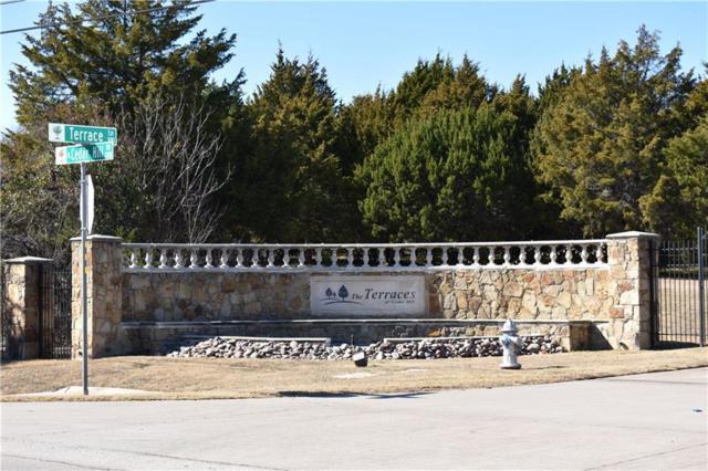 11 Terrace Lane, Cedar Hill, TX 75104 (MLS #13769036) :: Team Hodnett
