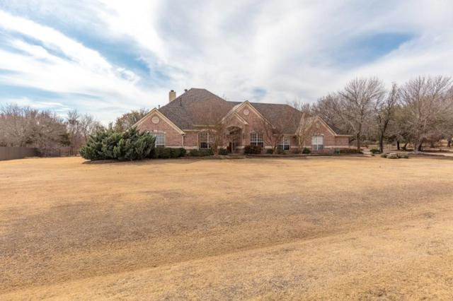 1730 Woodridge Court, Aledo, TX 76008 (MLS #13770023) :: Potts Realty Group
