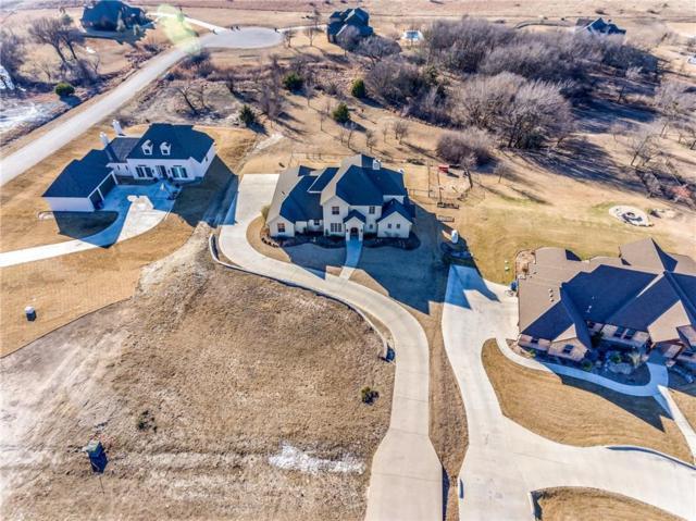 204 Creek Wood Drive, Aledo, TX 76008 (MLS #13770339) :: Team Hodnett