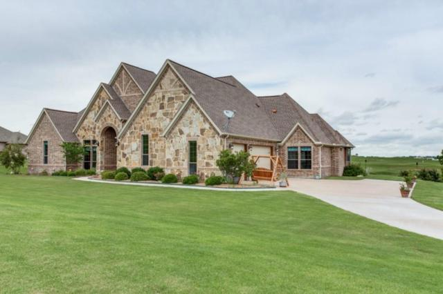 169 Pinnacle Peak Lane, Weatherford, TX 76087 (MLS #13771481) :: Team Hodnett