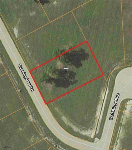 LT120 Running Deer Lane, Gunter, TX 75058 (MLS #13774760) :: Team Hodnett