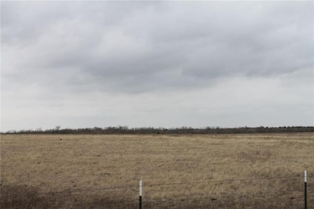 Tract 2 CR 1098, Celeste, TX 75423 (MLS #13775481) :: Team Hodnett