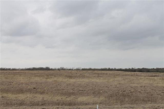 Tract 3 CR 1098, Celeste, TX 75423 (MLS #13775498) :: Team Hodnett