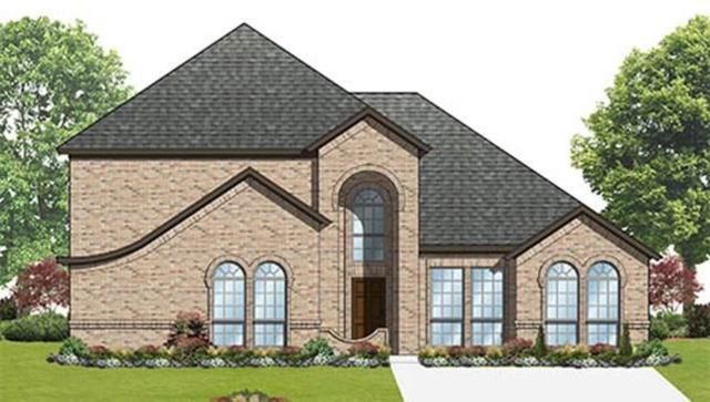 225 Duck Blind Avenue, Wylie, TX 75098 (MLS #13775769) :: Team Hodnett