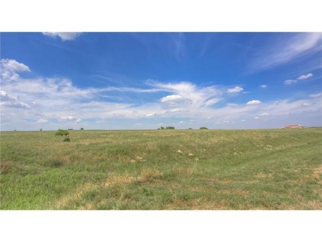 11652 E Rocky Creek Road, Crowley, TX 76036 (MLS #13776513) :: The Chad Smith Team