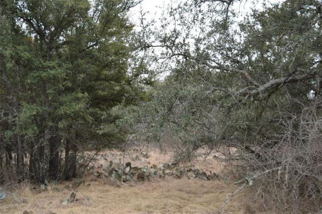 9998 County Road 574, Brownwood, TX 76801 (MLS #13777353) :: Team Hodnett