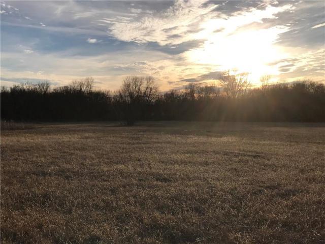 419 Walnut Grove Road, Whitewright, TX 75491 (MLS #13778079) :: Baldree Home Team