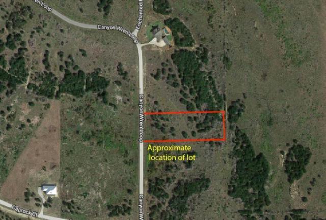 572 Canyon Wren Drive, Possum Kingdom Lake, TX 76449 (MLS #13778088) :: Team Hodnett