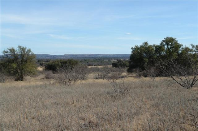 TBD Cr 238, Comanche, TX 76442 (MLS #13778231) :: Team Hodnett
