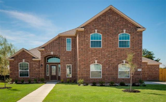 527 Meadow Springs Drive, Glenn Heights, TX 75154 (MLS #13778624) :: Kimberly Davis & Associates