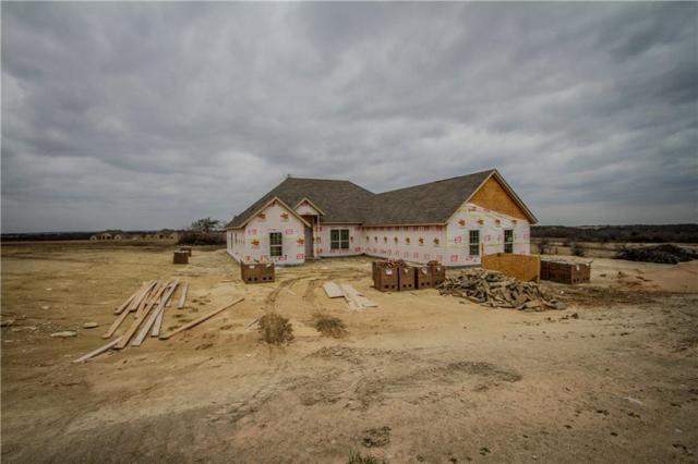 139 Stanford Lane, Springtown, TX 76082 (MLS #13780210) :: Team Hodnett