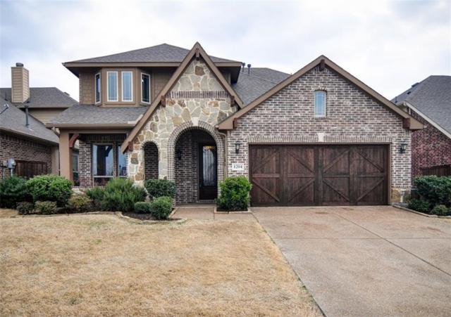 1204 E Shawnee Drive, Savannah, TX 76227 (MLS #13780279) :: Team Hodnett