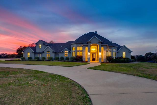 3069 N Goliad Street, Rockwall, TX 75087 (MLS #13780462) :: Team Hodnett