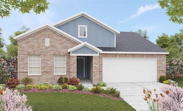 1569 Ferguson Drive, Forney, TX 75126 (MLS #13781023) :: Team Hodnett