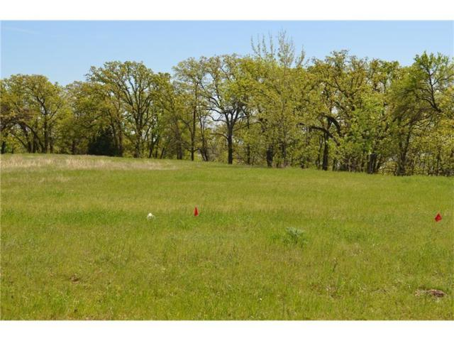 2307 Oak Bluff Drive, Corinth, TX 76210 (MLS #13781147) :: The Chad Smith Team