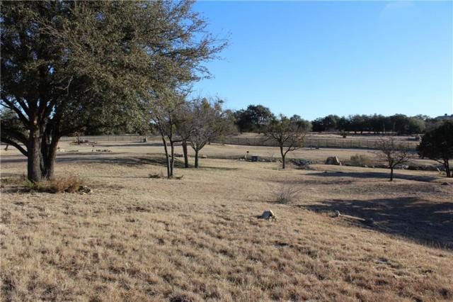 Lot 5C Easy Street, Glen Rose, TX 76043 (MLS #13781171) :: RE/MAX Town & Country