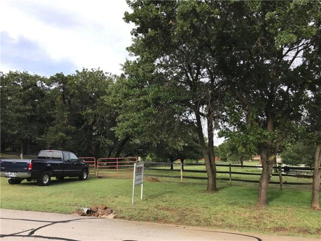 221 Cedarcrest Lane, Double Oak, TX 75077 (MLS #13781227) :: Cassandra & Co.
