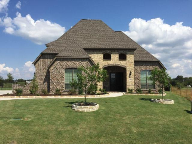 423 Pendall Drive, Wylie, TX 75098 (MLS #13781294) :: Hargrove Realty Group