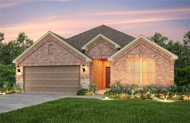1824 Virtue Port Lane, St Paul, TX 75098 (MLS #13781719) :: Team Hodnett