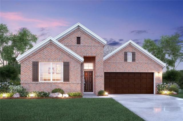 933 Bluebird Way, Celina, TX 75009 (MLS #13782360) :: Team Hodnett