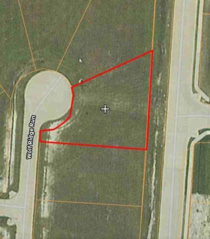 E115 Wolf Ridge Run, Gunter, TX 75058 (MLS #13782372) :: Team Hodnett