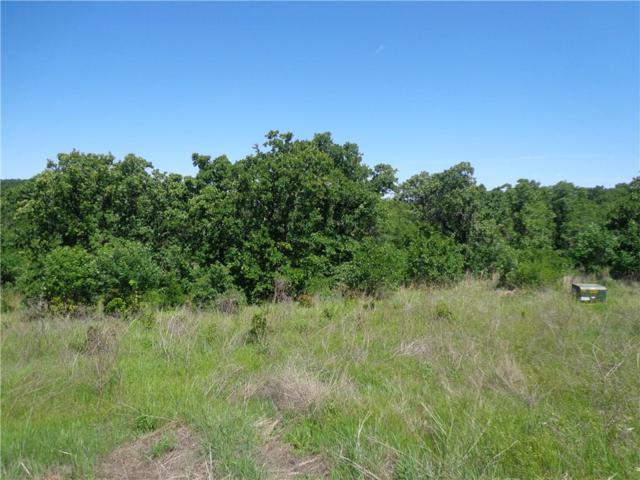 416 Sunset Bay Pointe Court, Chico, TX 76431 (MLS #13782399) :: Frankie Arthur Real Estate