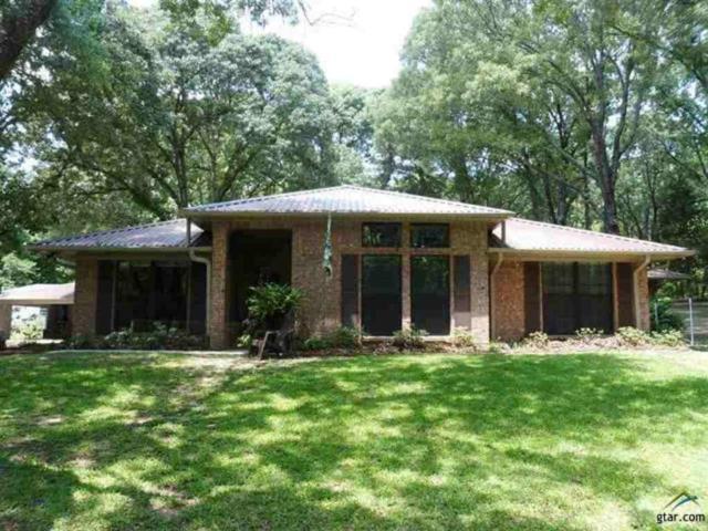858 County Road 3230, Quitman, TX 75783 (MLS #13782489) :: Team Hodnett