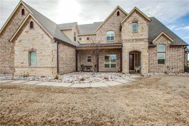 2417 Drain Drive, St Paul, TX 75098 (MLS #13783538) :: Team Hodnett