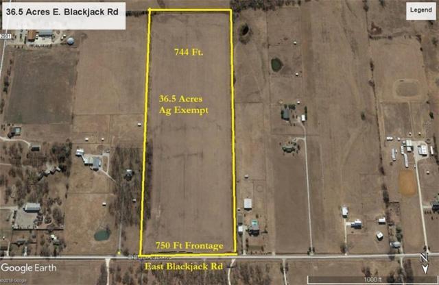 2482 Blackjack Road E, Pilot Point, TX 76258 (MLS #13783601) :: Real Estate By Design