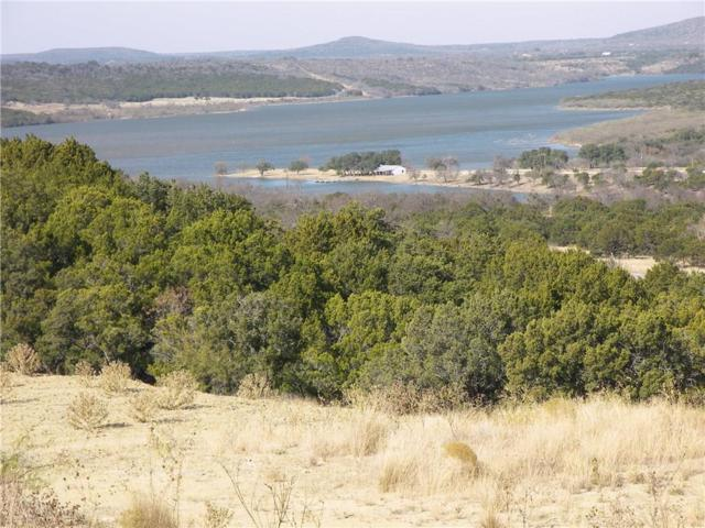 1000 Raven Circle, Possum Kingdom Lake, TX 76449 (MLS #13784250) :: Team Hodnett