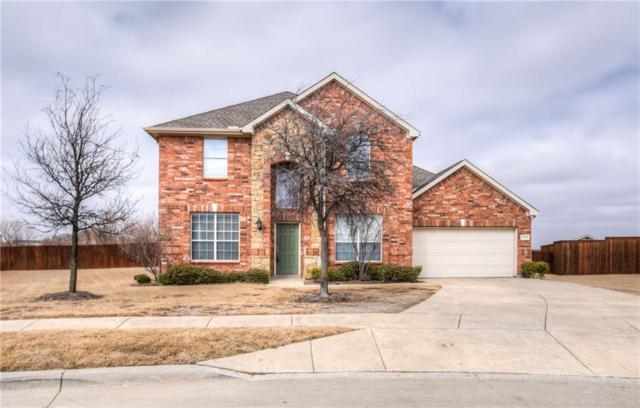 3028 Delray Court, Little Elm, TX 75068 (MLS #13784561) :: Team Hodnett