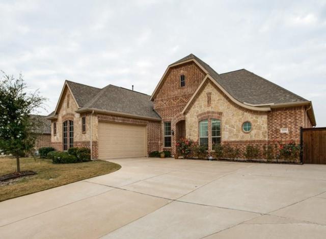 1019 Newington Circle, Forney, TX 75126 (MLS #13785215) :: Team Hodnett