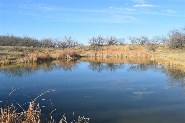 1327 County Road 302, Gouldbusk, TX 76845 (MLS #13785805) :: Team Hodnett
