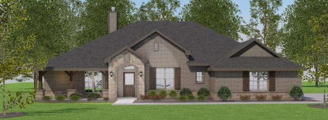 145 Judah Circle, Trenton, TX 75490 (MLS #13788362) :: Baldree Home Team