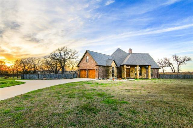 152 Eagles Crest Lane, Brock, TX 76087 (MLS #13789816) :: Team Hodnett