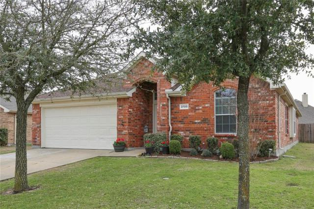 3700 Applewood Road, Melissa, TX 75454 (MLS #13790294) :: Team Hodnett