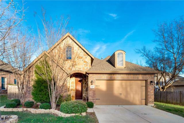 4217 Plumbago Drive, Denton, TX 76208 (MLS #13790604) :: Team Hodnett