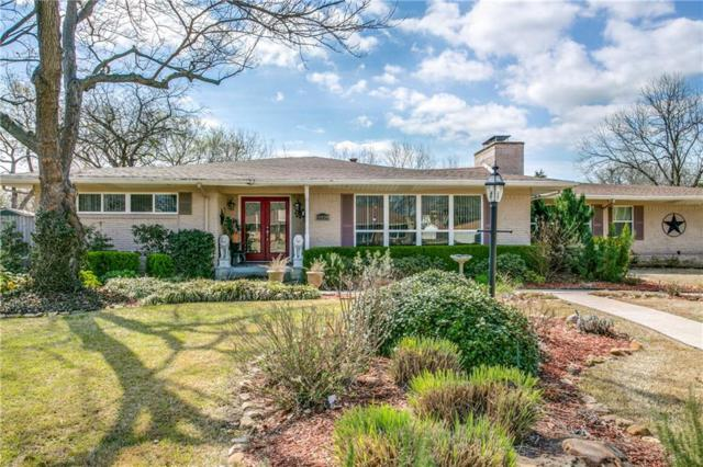 11028 Erhard Drive, Dallas, TX 75228 (MLS #13790864) :: Team Hodnett