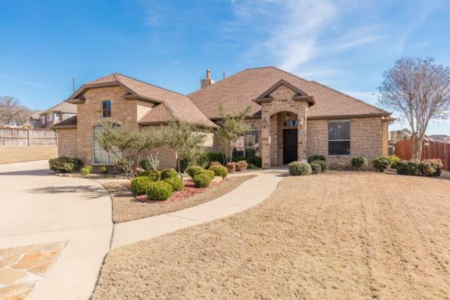 114 Crown Valley Court, Weatherford, TX 76087 (MLS #13790968) :: Team Hodnett