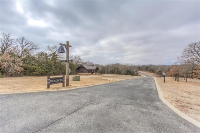 59 A Pronghorn Drive, Gordonville, TX 76245 (MLS #13791034) :: The Heyl Group at Keller Williams