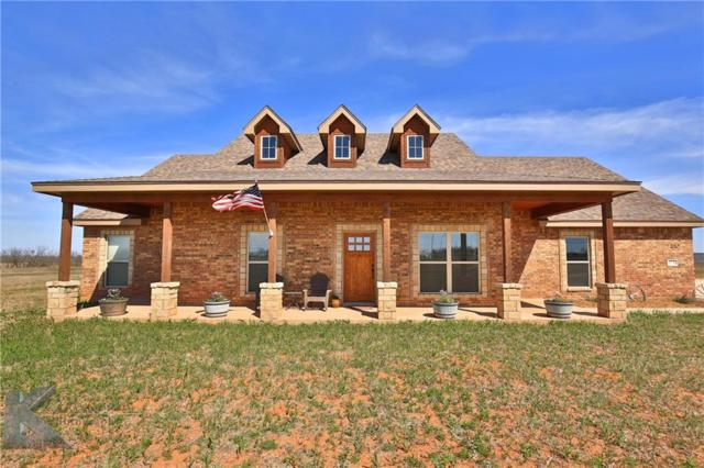 174 Cowboy Way, Tuscola, TX 79562 (MLS #13791099) :: The Tonya Harbin Team