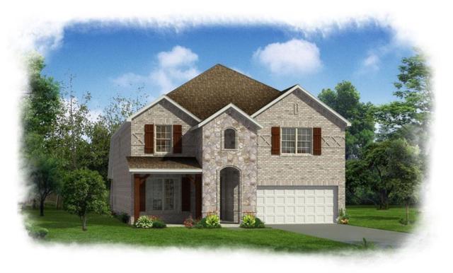 133 Cantle Street, Waxahachie, TX 75165 (MLS #13792718) :: Team Hodnett