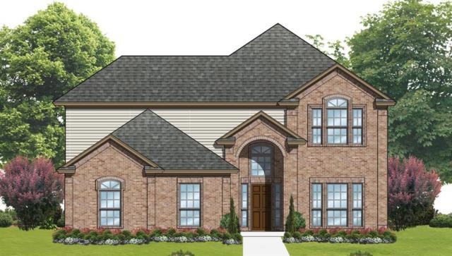 207 Duck Blind Avenue, Wylie, TX 75098 (MLS #13792797) :: Team Hodnett
